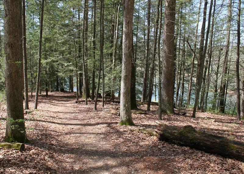 Biltmore Woodland Trail