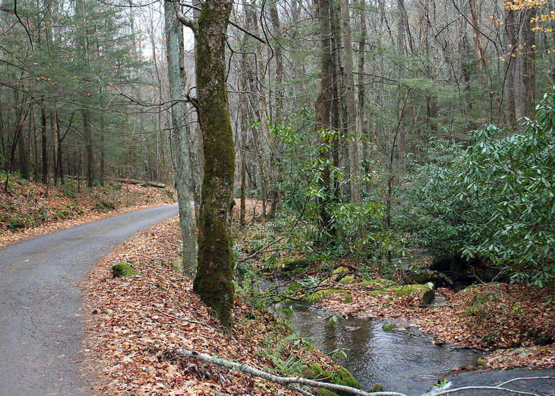 Roaring Fork Loop in the Smokey Mountains, TN