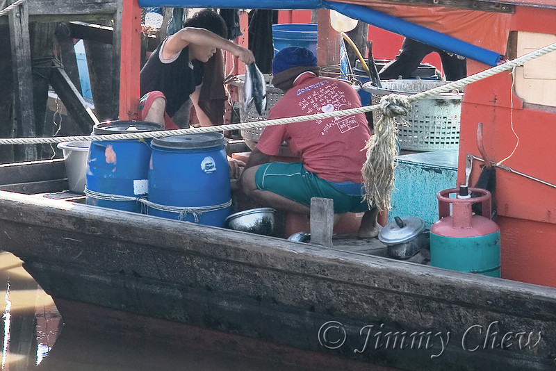 Picking 2 fishes at a time.