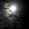 20121227-IMG_0113