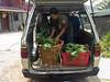 Unloading veg.