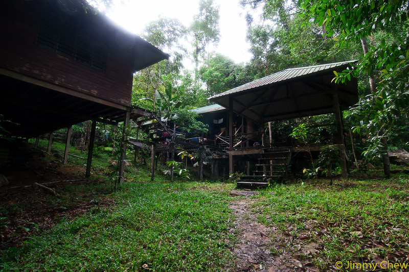 View of Ginseng Camp from entrance.