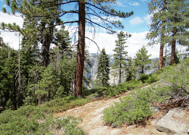 Along the 4-Mile Hike Trail from Glacier Point