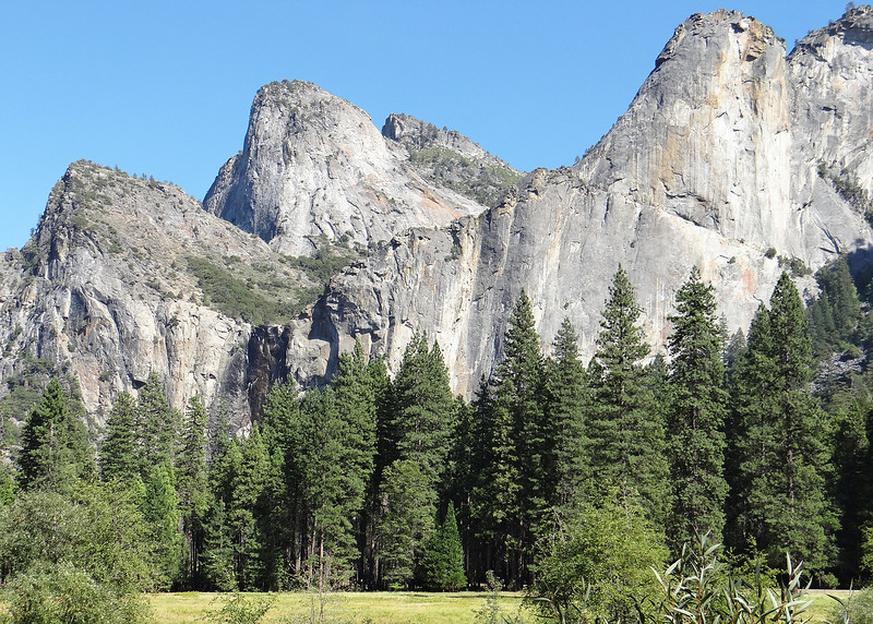 Lower, Middle and Higher Cathedral Rocks from the meadow in the valley