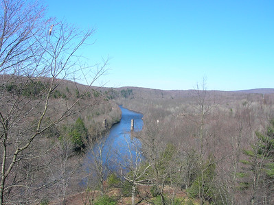 View of the gorge from the Fireline Trail at Hickory Run