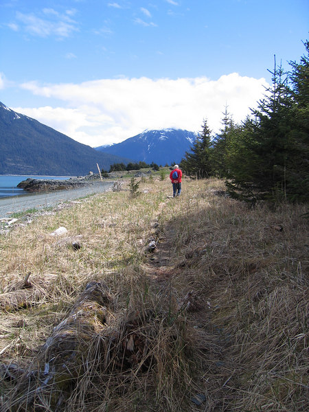 The trail emerges from the trees and follows along the beach