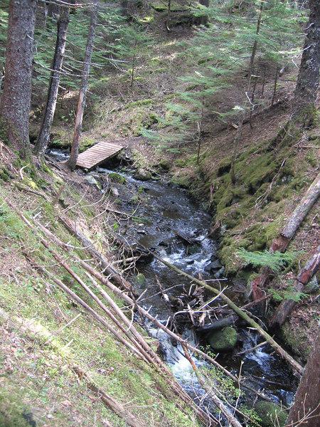 Beautiful little creek
