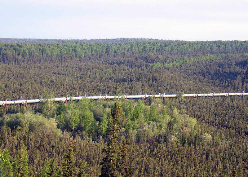 The Pipeline along the Elliott Highway on the way to the Dalton Highway.
