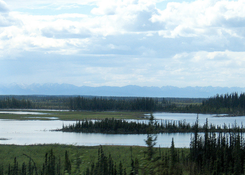 Chisana River about 45 miles from Tok, AK