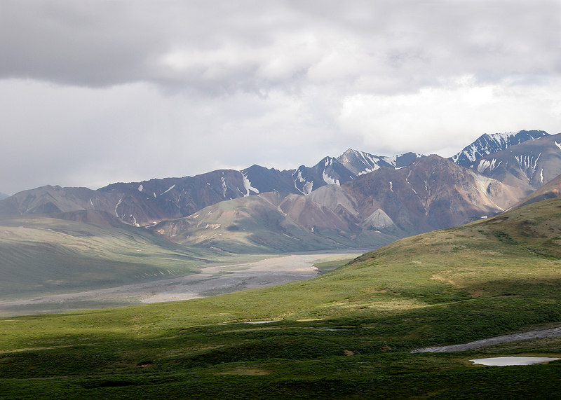 East Fork of Toklat as seen from Polychrome