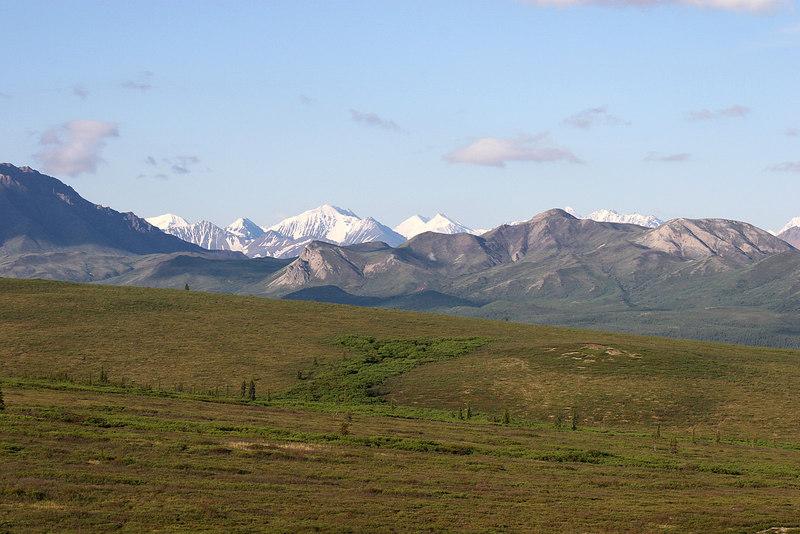 Alaskan Range from Primrose Ridge