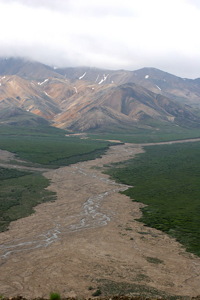 East Fork of the Toklat River