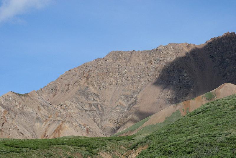 Hillside east of Toklat River