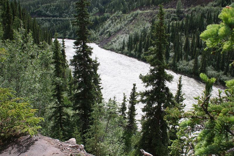 Nenana River at Denali Grizzly Bear Resort