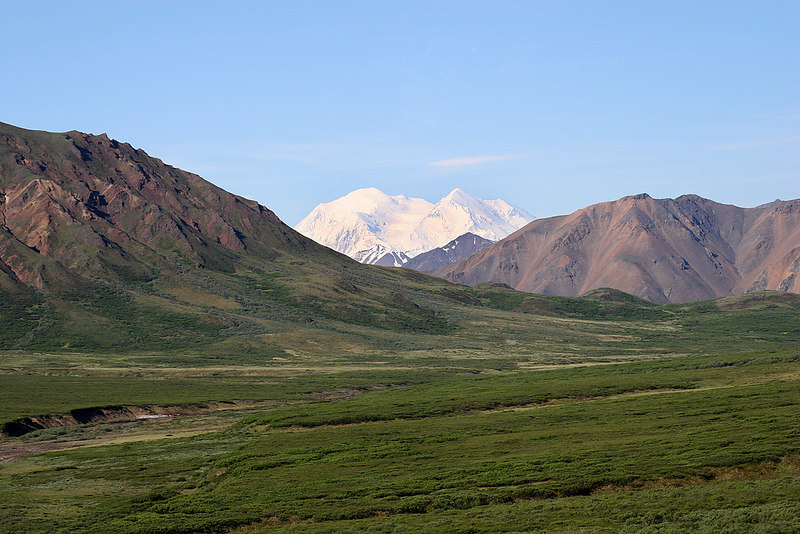Denali with Murie Flats in foreground