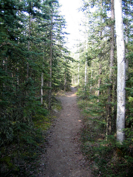 A trail from the entertainment area of the Sourdough Campground to our 5th wheel