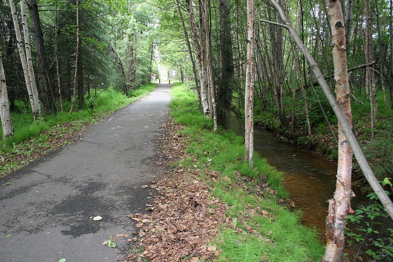 Along the Chester Creek trail