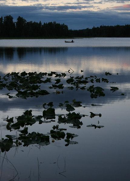 Johnson Lake across the street from the Kasilof RV Park