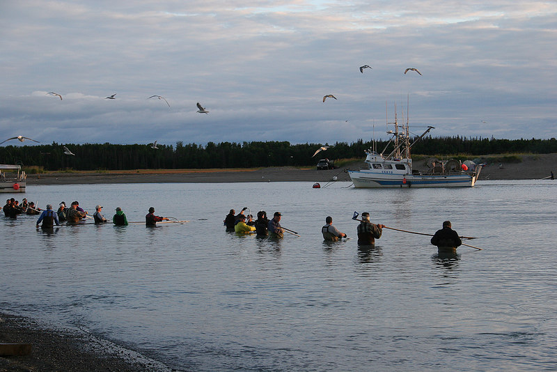 Mouth of Kenai River.  Dip net fishing, subsistence fishing for locals only.
