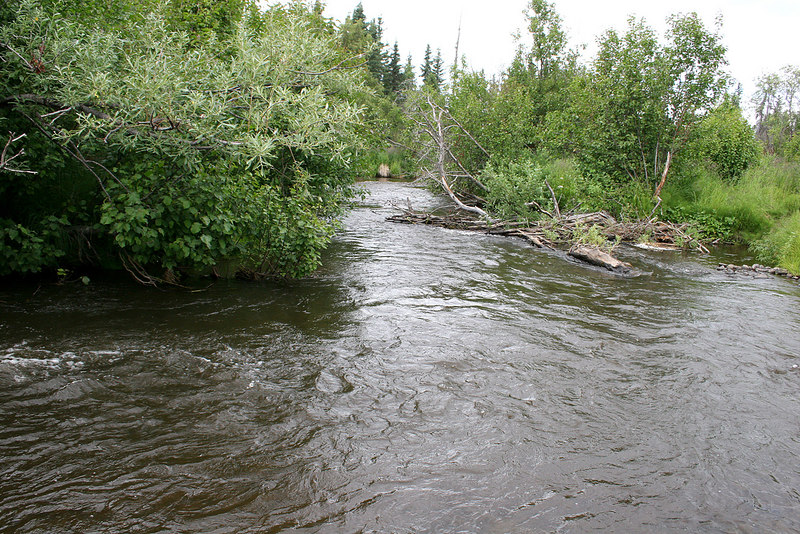 Crooked Creek near Kasilof RV Park, Kasilof, AK