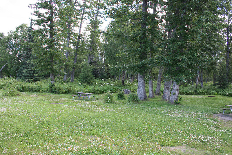 Picnic area at Discovery Campground in Captain Cook State Recreation Area, Kenai, AK