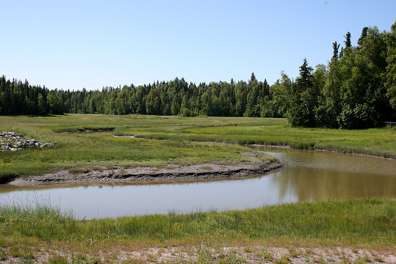 One of several ponds along the bike trail