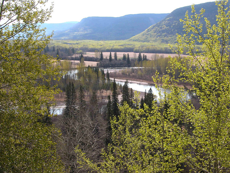 Jack Pine Point overlooking the Pine River Valley