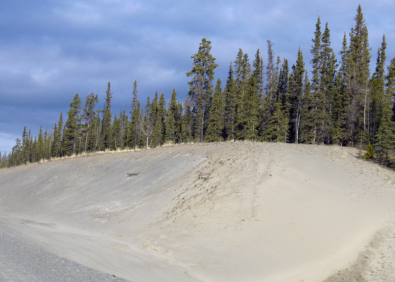 Sand on the roadside about 60 miles west of Whitehorse doesn't look as though it belongs