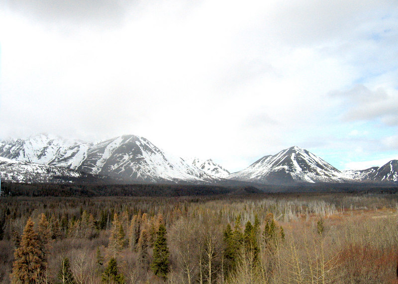 Mountains about 40 Miles west of Haines Junction