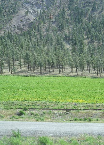 About 33 miles south of Cache Creek, BC