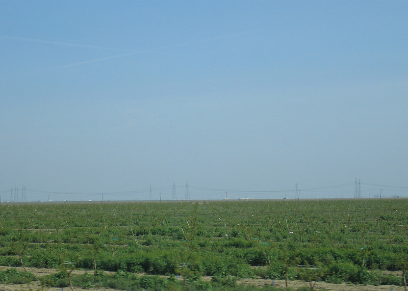 Between Kettleman, CA and Avenal, CA on Interstate 5