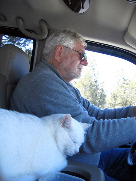 Moloko sleeping while Mike is driving