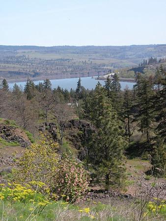Columbia Gorge drive in OR and WA - 4/19/06