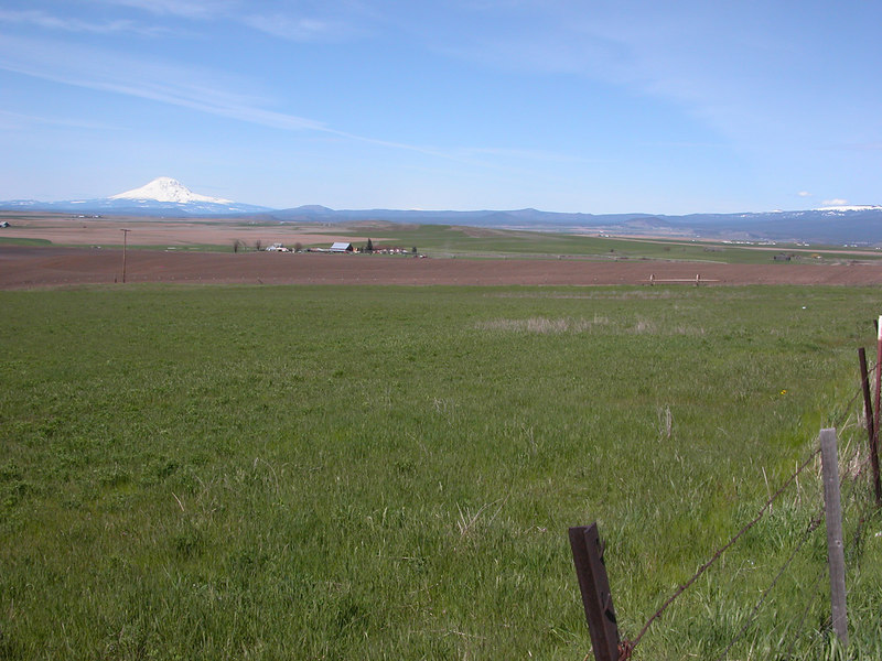Klickitat Valley, WA and Mt. Adams in the background