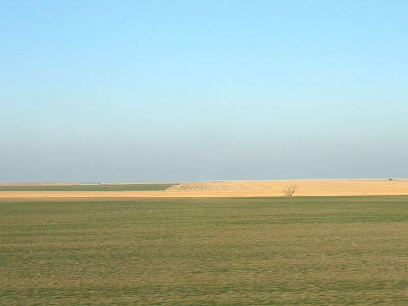Wheat and green fields along route 283 n Kansas