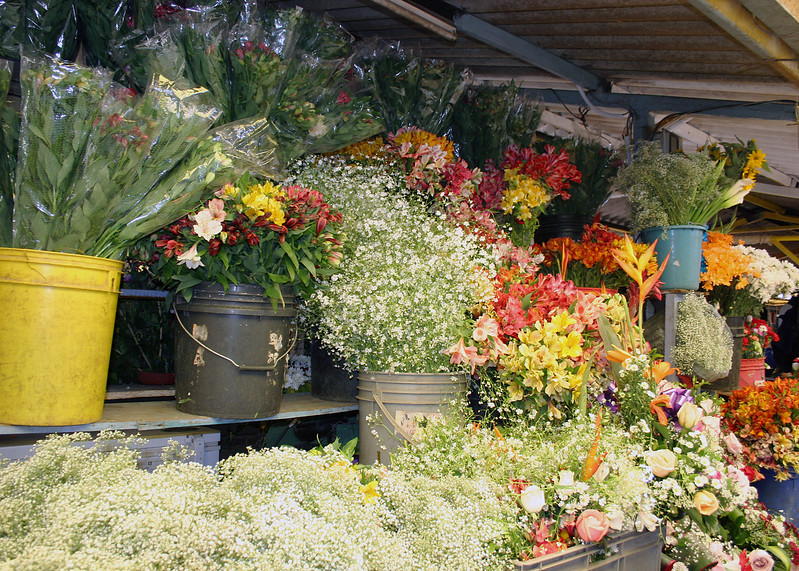 Flower stall at the market.