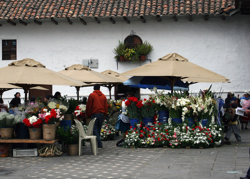 The flower market was beautiful with all the colorful flowers.  We didn't buy any flowers but we are told you can buy 1 dozen roses in the supermarket $2.25 and even less here at the market.