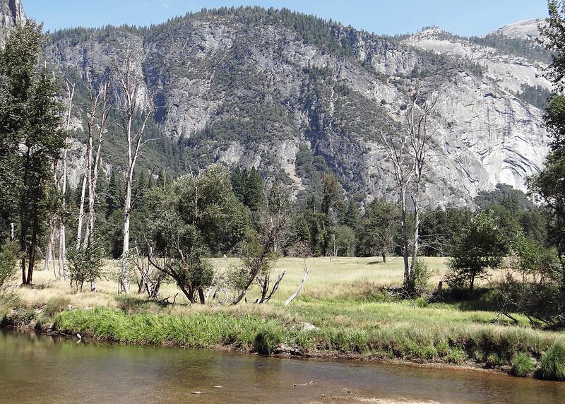 At Swinging Bridge Picnic area