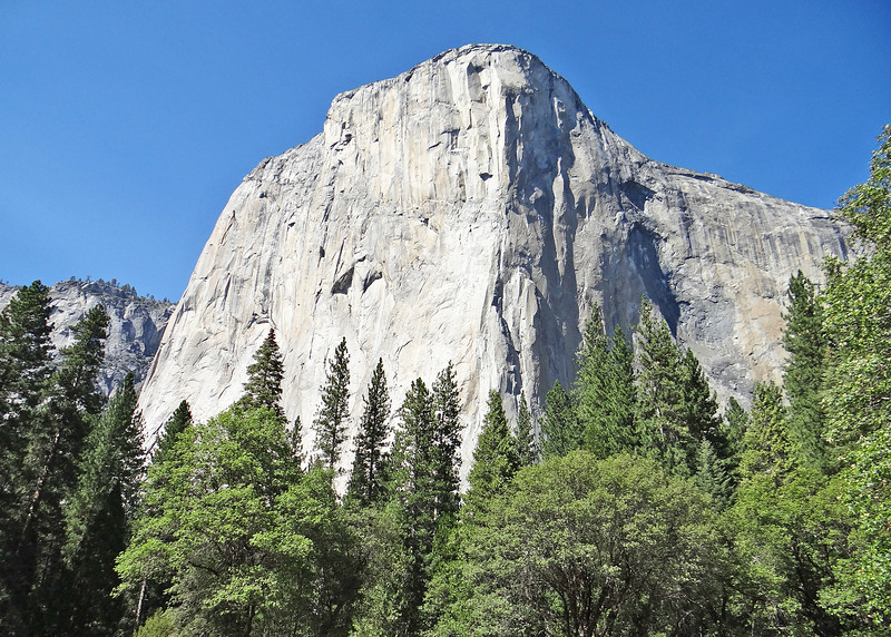 El Capitan from the valley