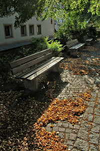 Benches around the Leonberg church.