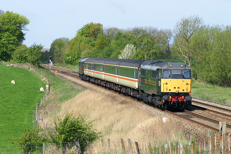 31602 and 31459, Treales 3/5/2004