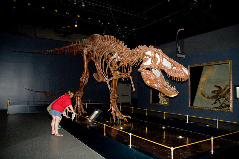Wendy and John check out a T-Rex.