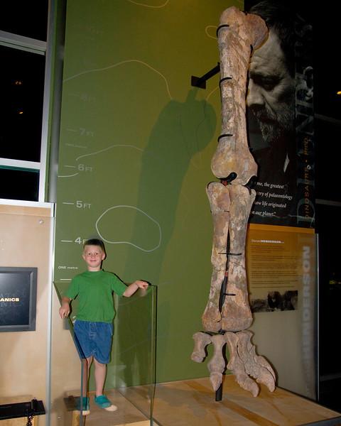 John standing next to a dinosour leg.
