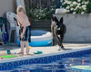 While in Kamloops, we stayed at Lana's house. Here you can see Coal (sp?) - the oldest of two dogs she has. Whenever anyone is in, or near the pool this dog would pace around and around and around and...well, you get the idea.<br /> <br /> John loved swimming in the pool. Kamloops was pretty hot (low 30's) while we where there so he swam when ever he could.