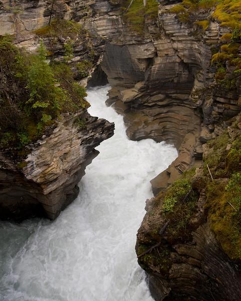 Below Athabasca Falls.