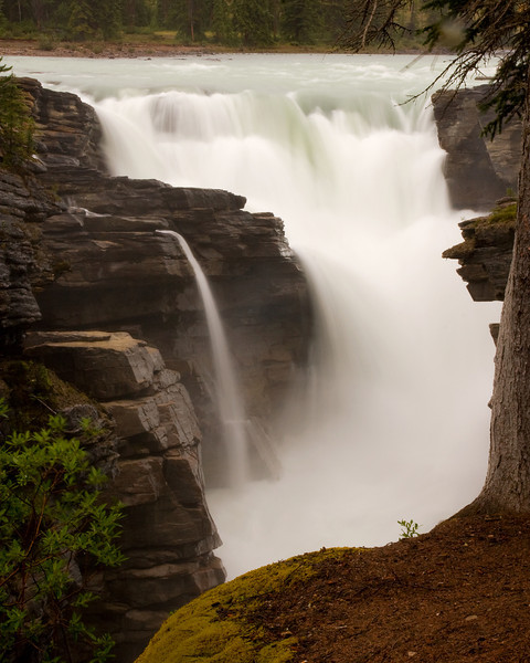 Athabasca Falls, on Highway 93 leaving Jasper.