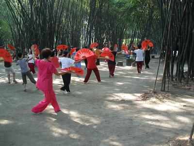 Tai Chi at Wangjiang Lou Park in Chengdu.
