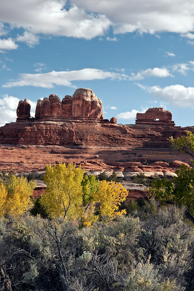 Views of Canyonlands National Park