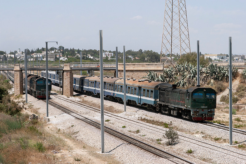 040-DK-86 Lychee Rades 3/8/2010<br /> 163 1145 Tunis Ville-Erridah