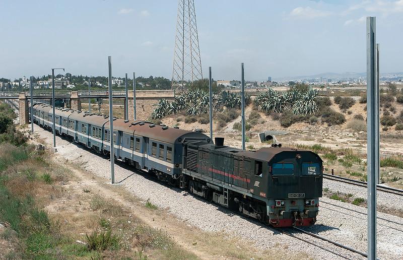 040-DK-97 Lychee Rades 3/8/2010<br /> 164 1125 Erriadh-Tunis Ville